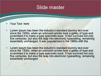 0000072516 PowerPoint Template - Slide 2