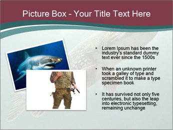 0000072516 PowerPoint Template - Slide 20