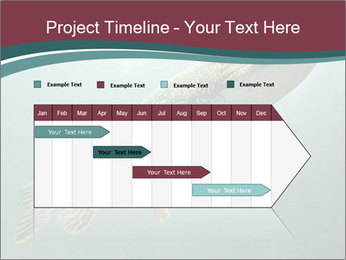0000072516 PowerPoint Template - Slide 25