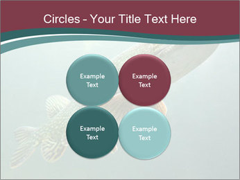 0000072516 PowerPoint Template - Slide 38