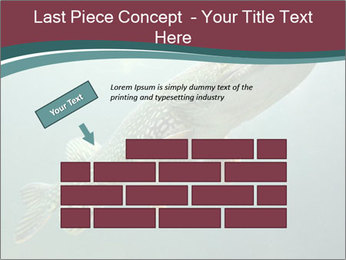0000072516 PowerPoint Template - Slide 46