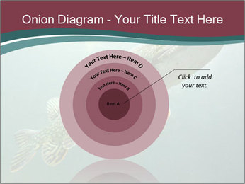 0000072516 PowerPoint Template - Slide 61