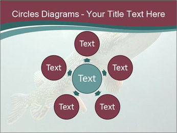 0000072516 PowerPoint Template - Slide 78