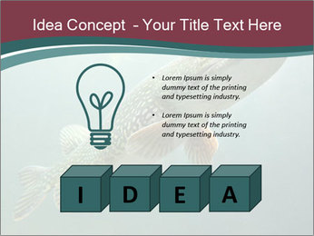 0000072516 PowerPoint Template - Slide 80
