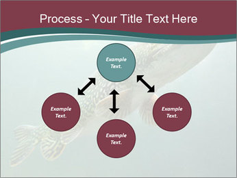 0000072516 PowerPoint Template - Slide 91