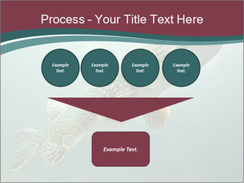 0000072516 PowerPoint Template - Slide 93
