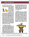 0000072516 Word Template - Page 3