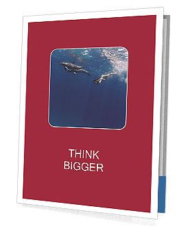 0000072520 Presentation Folder