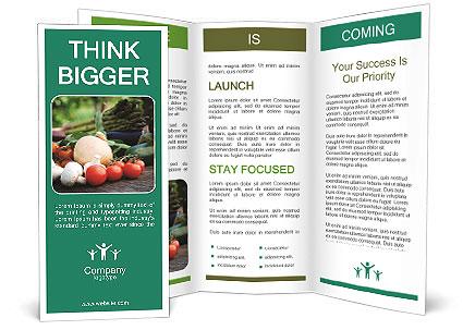 0000072525 Brochure Templates