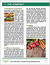 0000072525 Word Template - Page 3