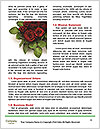 0000072535 Word Templates - Page 4
