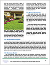0000072538 Word Template - Page 4