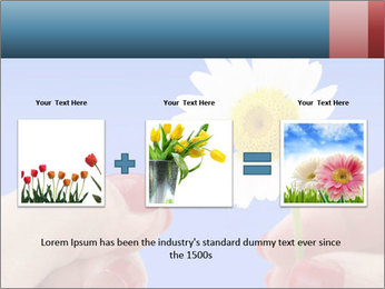 0000072542 PowerPoint Template - Slide 22