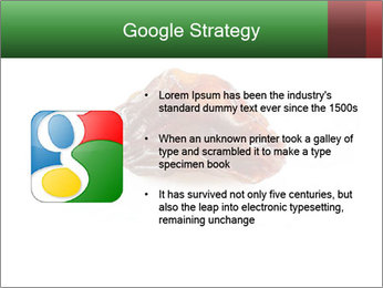 0000072546 PowerPoint Template - Slide 10