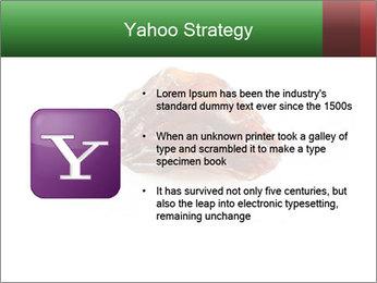 0000072546 PowerPoint Templates - Slide 11