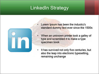 0000072546 PowerPoint Templates - Slide 12