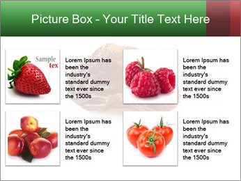 0000072546 PowerPoint Templates - Slide 14
