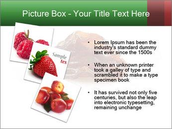 0000072546 PowerPoint Templates - Slide 17