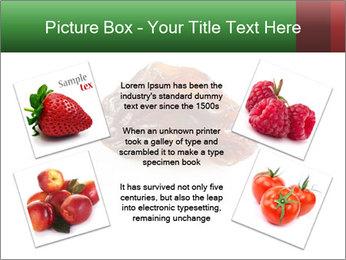 0000072546 PowerPoint Templates - Slide 24