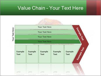 0000072546 PowerPoint Templates - Slide 27