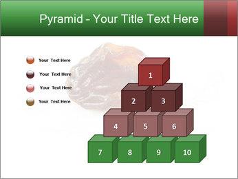 0000072546 PowerPoint Templates - Slide 31