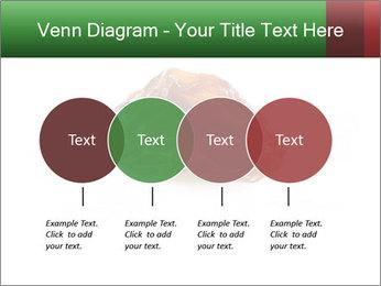 0000072546 PowerPoint Templates - Slide 32