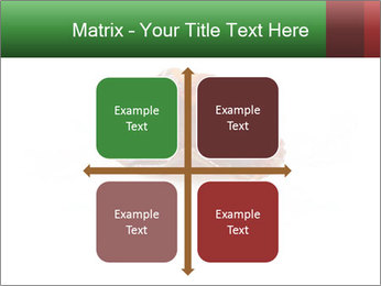 0000072546 PowerPoint Templates - Slide 37