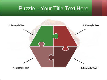 0000072546 PowerPoint Templates - Slide 40