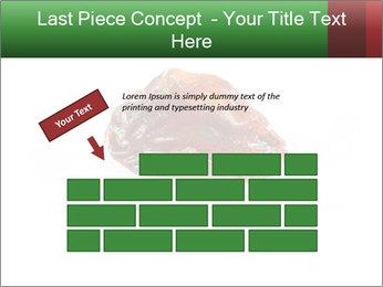 0000072546 PowerPoint Templates - Slide 46