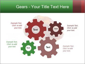 0000072546 PowerPoint Templates - Slide 47