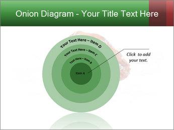 0000072546 PowerPoint Templates - Slide 61