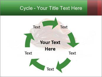 0000072546 PowerPoint Templates - Slide 62