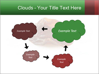 0000072546 PowerPoint Templates - Slide 72