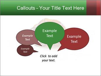 0000072546 PowerPoint Template - Slide 73
