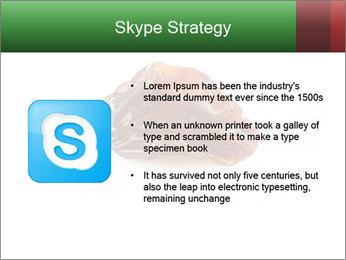 0000072546 PowerPoint Template - Slide 8