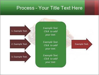 0000072546 PowerPoint Template - Slide 85