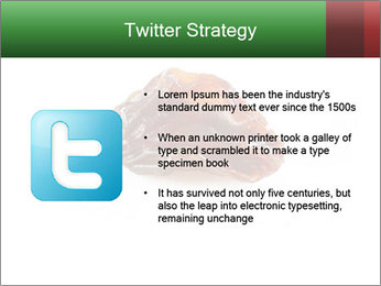 0000072546 PowerPoint Templates - Slide 9