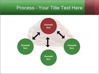 0000072546 PowerPoint Template - Slide 91