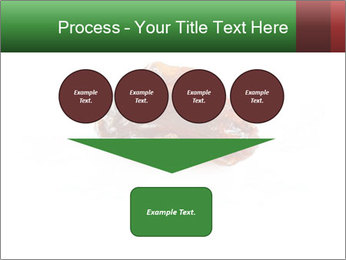 0000072546 PowerPoint Template - Slide 93