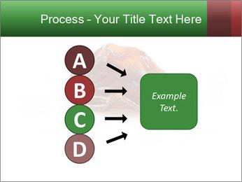 0000072546 PowerPoint Template - Slide 94