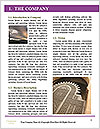 0000072547 Word Template - Page 3