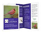 0000072560 Brochure Templates