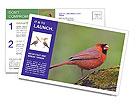 0000072560 Postcard Template