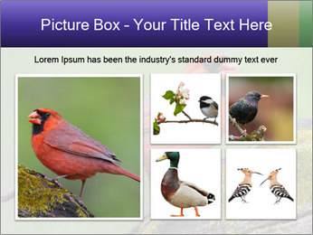 0000072560 PowerPoint Template - Slide 19