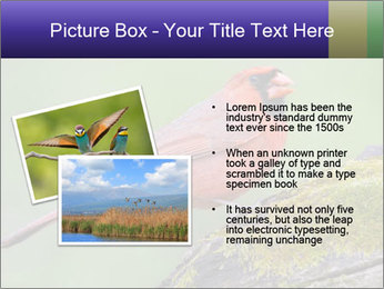 0000072560 PowerPoint Template - Slide 20