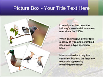 0000072560 PowerPoint Template - Slide 23