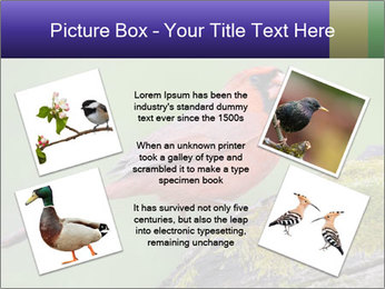 0000072560 PowerPoint Template - Slide 24