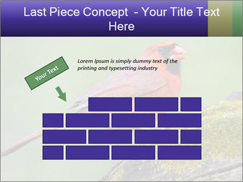 0000072560 PowerPoint Template - Slide 46