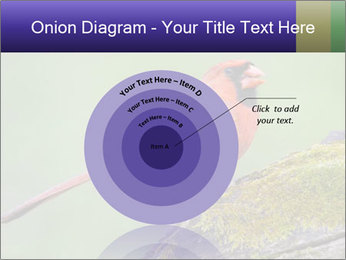 0000072560 PowerPoint Template - Slide 61