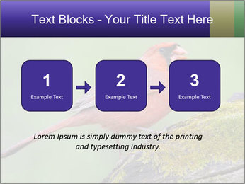 0000072560 PowerPoint Template - Slide 71